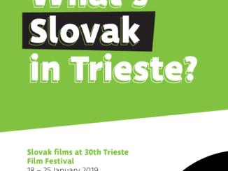 Slovensko je partnerskou krajinou platformy pre filmových profesionálov na festivale v Terste.