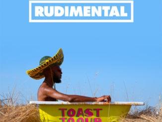 SkupinaRUDIMENTALpráve vydala albumovú novinkuToast To Our Differences.