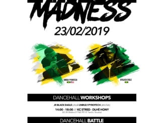 WORKSHOPS | BATTLE | PARTY | MADNESS