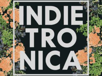 Indietronica: 10. mája v KC Dunaj!
