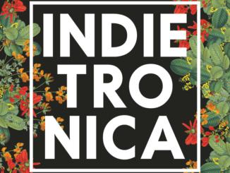 Indietronica: 26. júla v KC Dunaj!