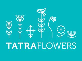 Tatra Flowers: 31.augusta v Tatrách opäť rozkvitne umením a zážitkami.