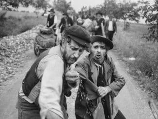 Digitálne reštaurovaný film Ľalie poľné sa predstaví na prestížnom festivale klasických filmov vLyone.