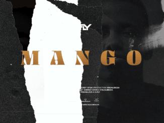 Po roku plnom spoluprác sa D-Fly vracia ksólo tvorbe vnovom singli Mango.