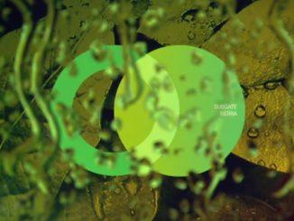 Subgate vydal na labelu Area Verde melodické Sierra EP!