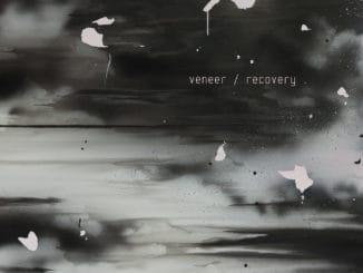 Veneer – Recovery