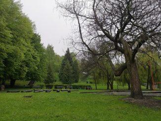 Súčasné umenie asvetelné inštalácie naživo, votvorenom priestore Zechenterovej záhrady vKremnici.