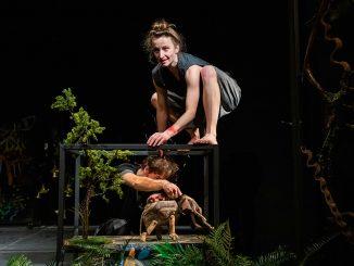 Bratislavské bábkové divadlo získalo už druhú Grand Prix v tejtosezóne, cenu získala jeho nová inscenácia Mauglí